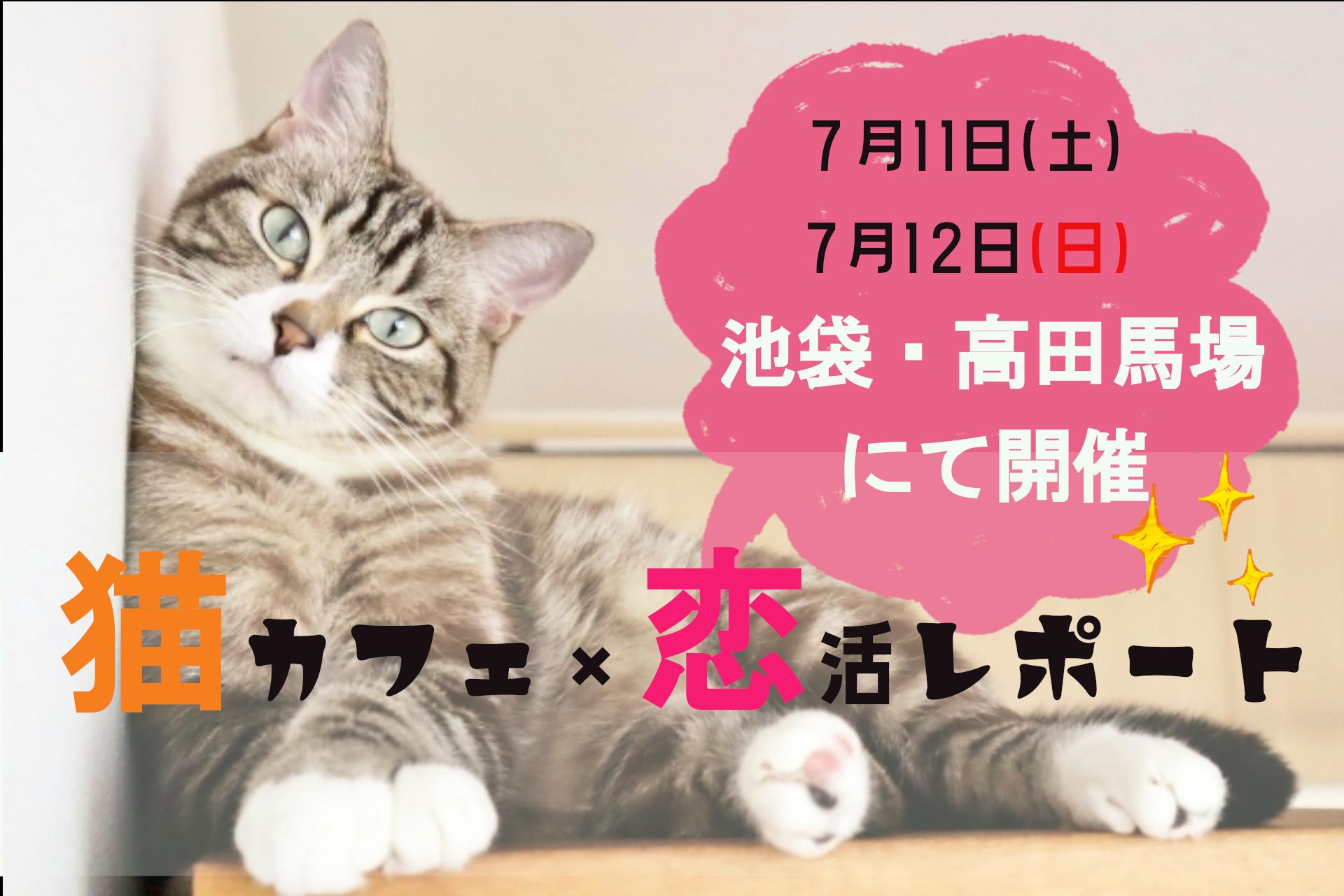 7月11(土)7月12日(日)高田馬場・池袋で開催🐱猫カフェ×恋活コン💓のサムネイル
