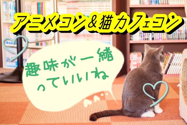 8月8日、8月23日大阪にて開催💓アニメコン&猫カフェコン✨趣味が同じだから恋に繋がりやすい!のサムネイル