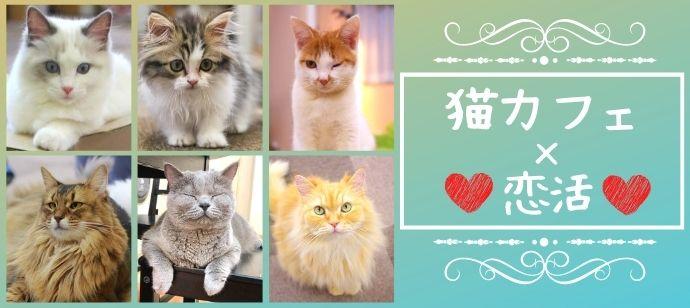 【猫カフェ×20代限定】3か月以内に恋人が欲しい男女★にゃんこと癒しのひと時を♪@横浜のバナー